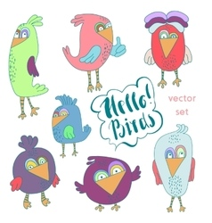 Cartoon set of funny colourful bird vector image