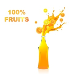 Fruits juices collection Orange and lemon vector image