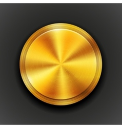 gold textured metal button vector image