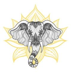 head a elephant boho design indian god ganesha vector image