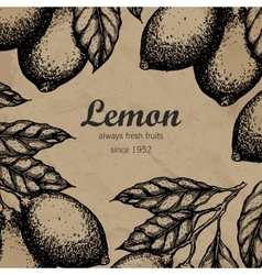 Lemon tree design template Hand drawn lemon fruit vector image