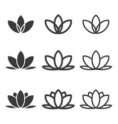 lotus flowers icon set vector image
