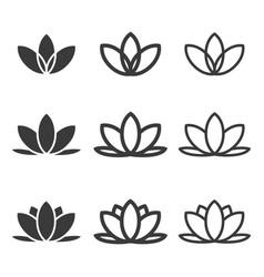 Lotus flowers icon set vector