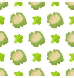 cauliflower and broccoli seamless pattern isolated vector image