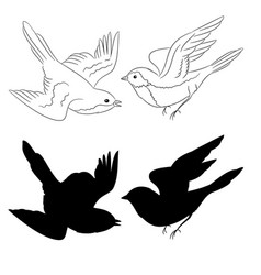 The outline and silhouette birds set of six vector