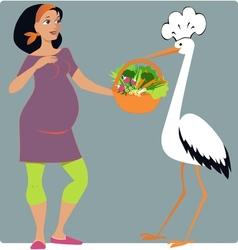 Pregnancy Diet vector image vector image
