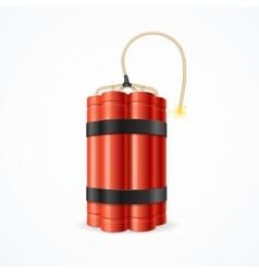 Detonate Dynamite Bomb vector image
