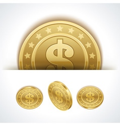 Dollars money coins in perspective vector image
