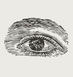 Engraved vintage eye vector