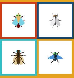 Flat icon housefly set of mosquito dung hum and vector