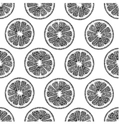 pattern with citrus vector image