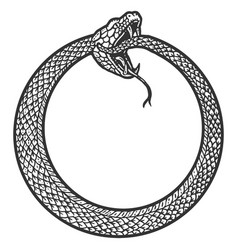 Uroboros snake coiled in a ring biting its tail vector