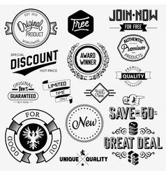 Set of vintage bagdes vector