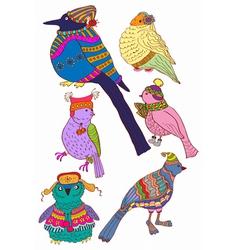winter color birds vector image