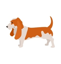 Basset hound dog vector image vector image