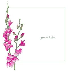 long orchids minimal card vector image vector image