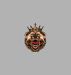 angry bear on grey background vector image