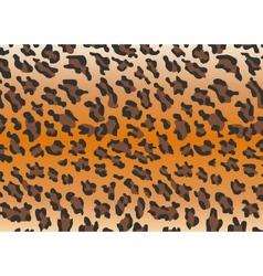 Background leopard skin vector image