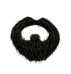 detailed black mustache and beard on white vector image