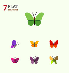 Flat butterfly set of beauty fly butterfly vector