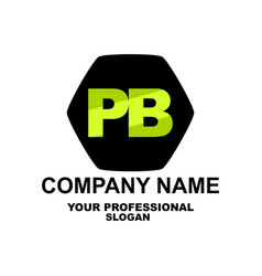 letter logo two letters p and b in the vector image