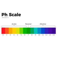 ph scale vector image