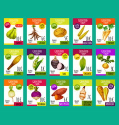 Price cards for exotic vegetables vector