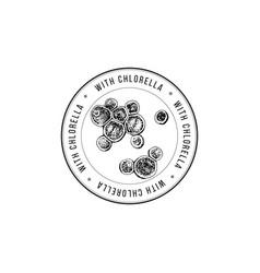 Round emblem with hand drawn chlorella algae vector