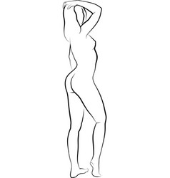 sketch naked woman vector image