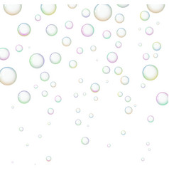 soap bubbles on white background vector image