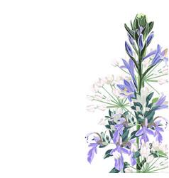 wild flowers bouquet elegant card vector image