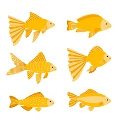 Goldfish set isolated on white background Yellow vector image vector image