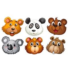 Six heads of bears vector image