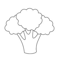 Broccoli icon outline Singe vegetables icon from vector image vector image