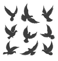 dove spiritual silhouettes vector image