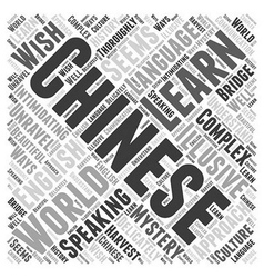 Learn chinese word cloud concept vector