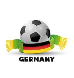 leather soccer ball and green scarf vector image