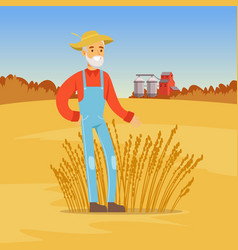 Mature farmer man harvesting wheat agriculture vector