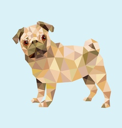 Pug dog low polygon vector