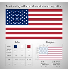American flag with exact dimensions vector