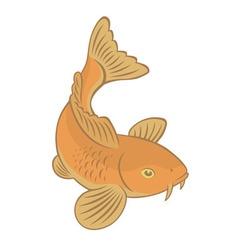 carp koi vector image