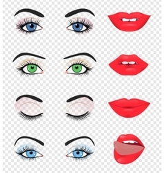 Beauty female eye and lip vector image