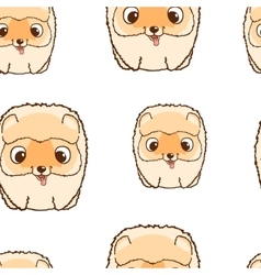 Seamless pattern with pomeranian puppies Colorful vector image vector image