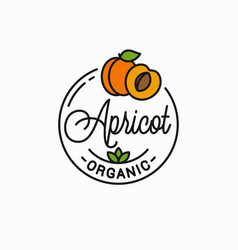 Apricot fruit logo round linear slice vector