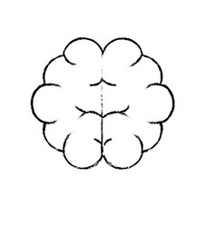 Figure brain human anatomy organ of inteligence vector