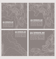 geographic mountain topography vector image