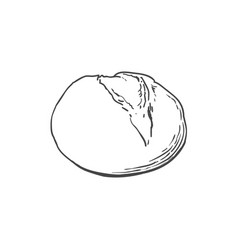 sketch white round bread isolated vector image