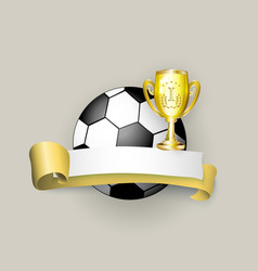 flat cartoon football ball banner isolated vector image