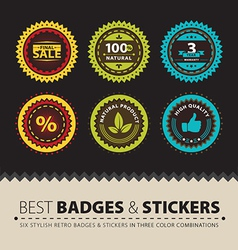 Badges and Stickers vector image