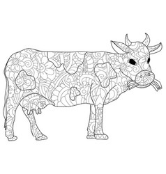 Adult antistress coloring animal cow pattern vector